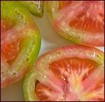 tomatoes, mediterranean diet