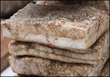 picture of stacked slabs of lardo